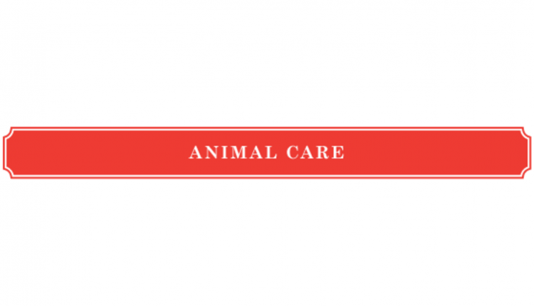 header_animalcare